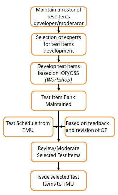 test-item-development